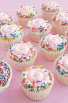 Birthday Cake Sprinkles Mix | Rainbow Birthday Cake Sprinkle Medley